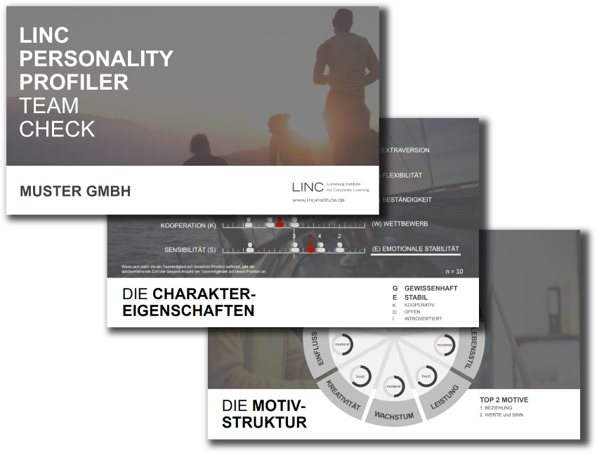 LINC PERSONALITY PROFILER Team Check Persönlickeitstest Coaching